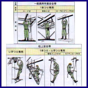 Waist Safety Belt